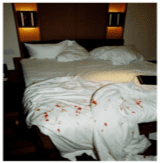 Blood Cleanup in Hotels
