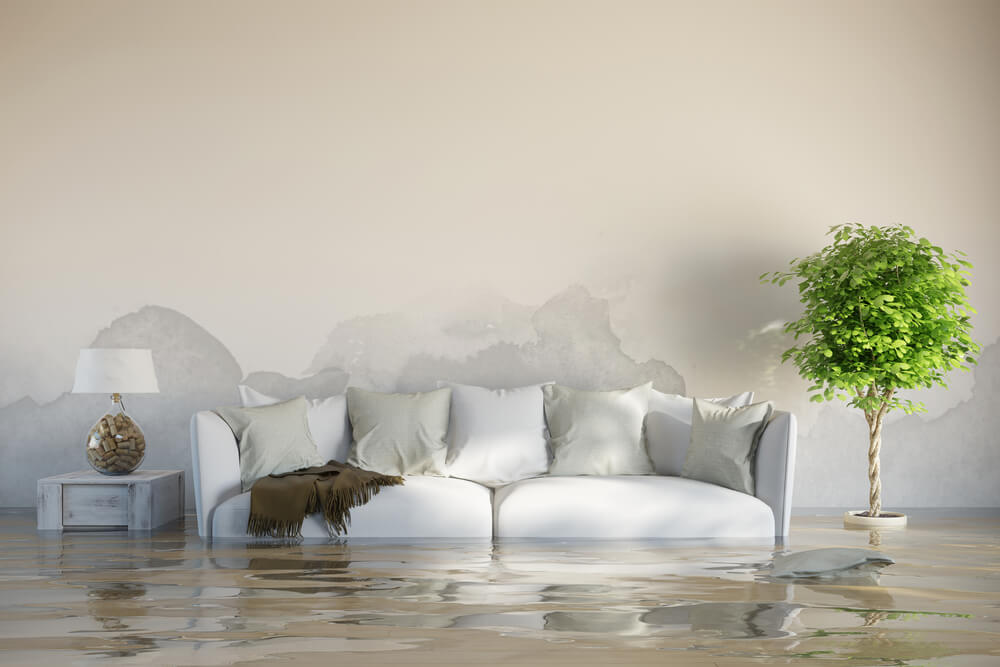Water Damage Restoration Guide