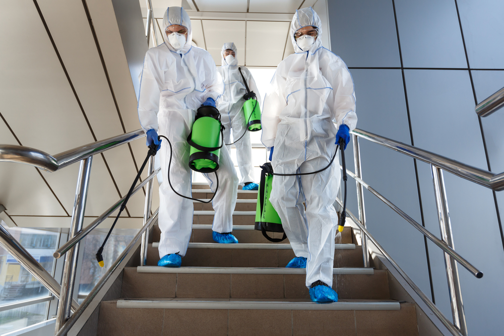 Why Professional Disinfection Should Be A Part Of Your Business Plan Moving Forward