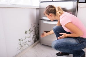 a woman identifying mold in a home